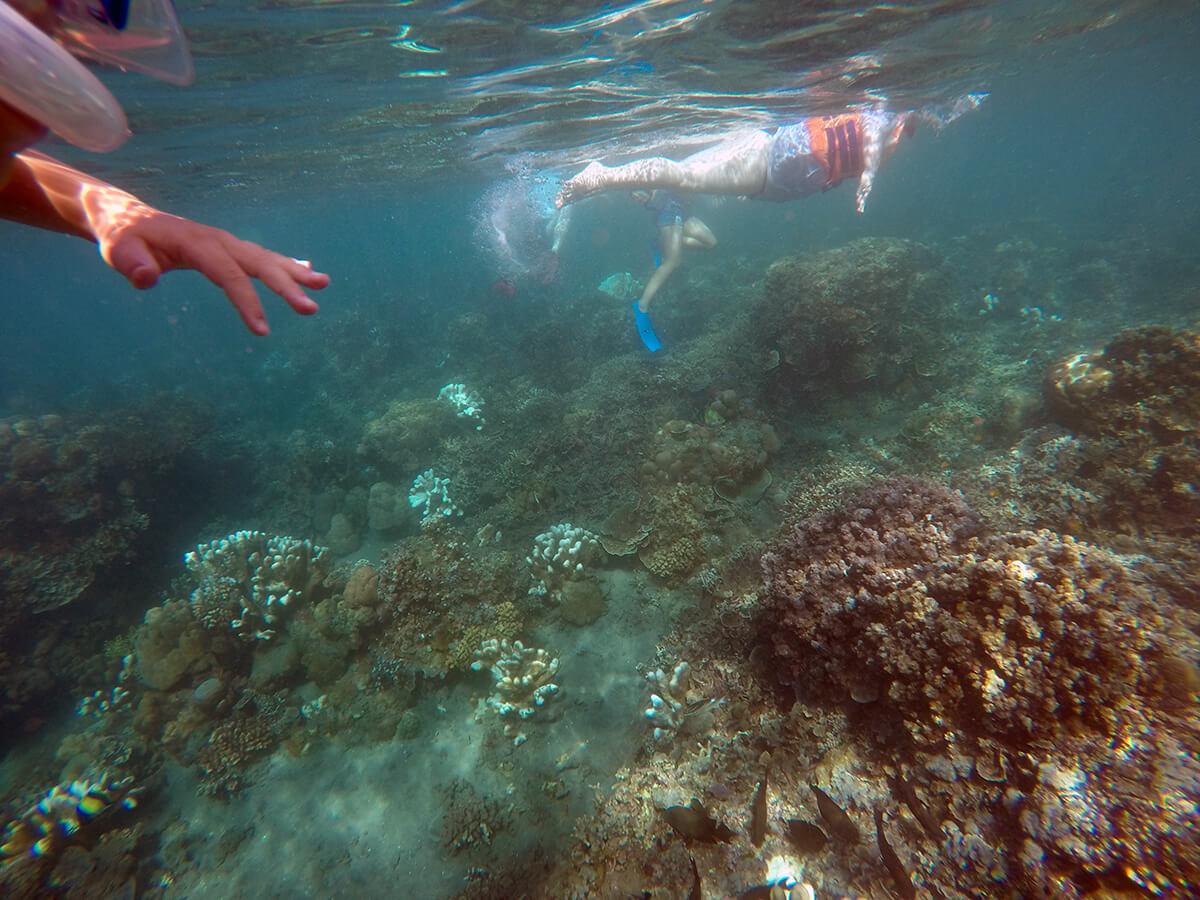 Snorkling i Amed, Bali