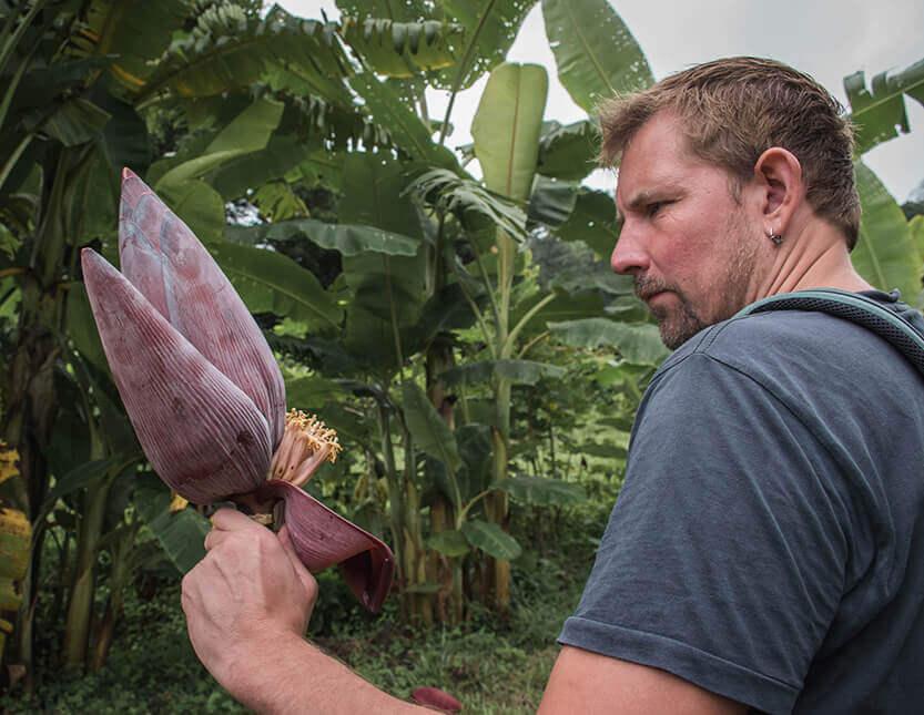 Peter med blomsten fra en bananpalme. Mae Sa Valley