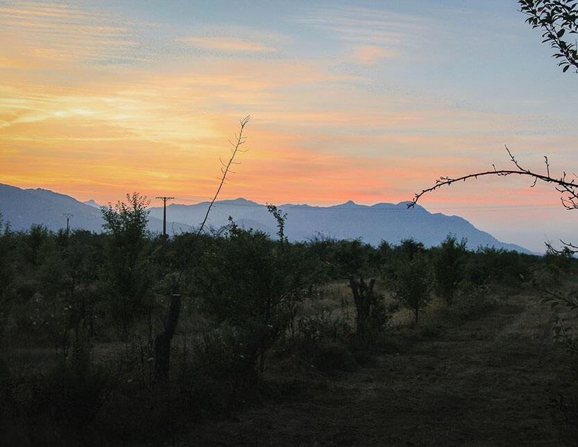 Korsikas bjerge står som silhuetter mod vest
