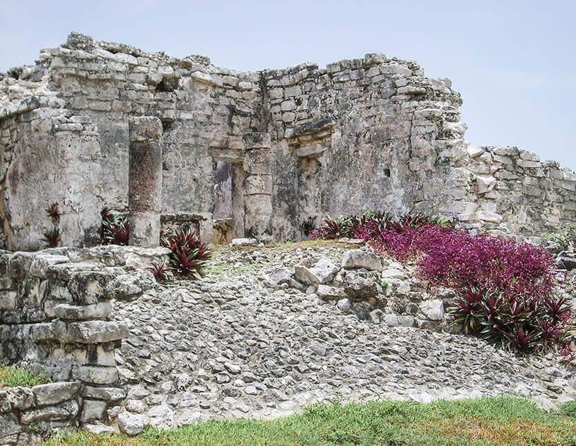 Der vokser smukke blomster mellem ruinerne, Tulum
