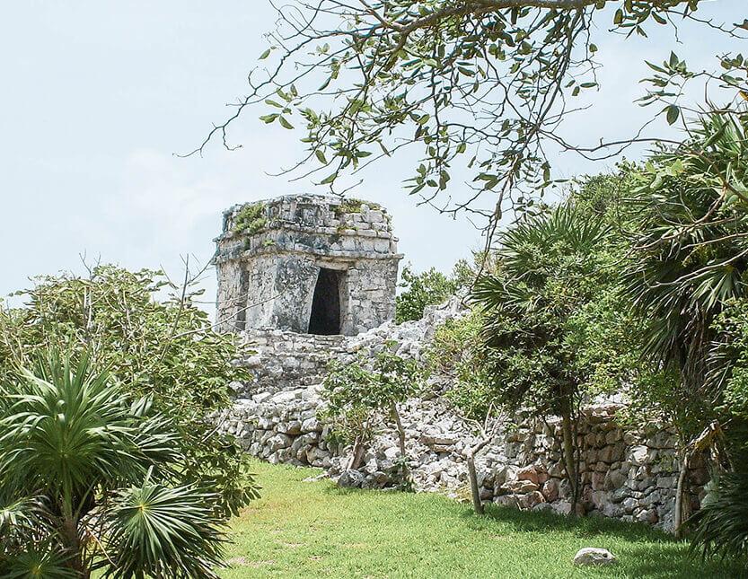 Ruinerne ligger midt i det grønne. Tulum.