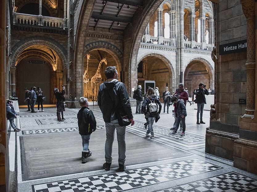 National Historisk Museum i London. Når man kigger rundt om hjørnet ser man et stort skelet, der hænger i luften under taget i den flotte bygning.