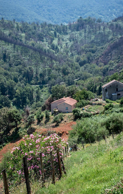 Udsigt fra Chiastra by. Korsika.
