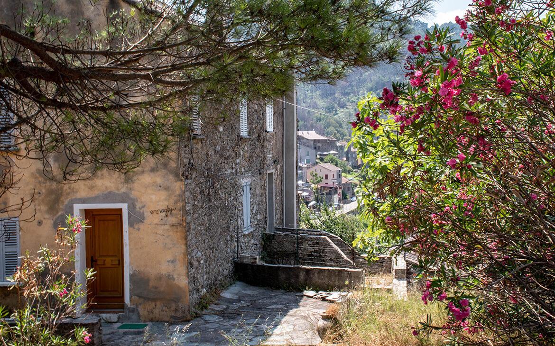 Hus i Chiatra, Korsika