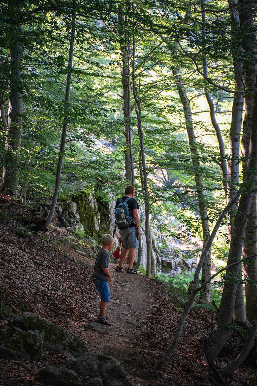 Der er mange muligheder for at vandre på Korsika. Her er vi på vej gennem en skov ned af at bjerg for at nå ned til vandfaldene Cascade des Anglais