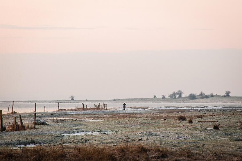 Mols - Kalø Slotsruin. Jeg var ikke den eneste der var ude og jagte morgenlyset, den morgen.