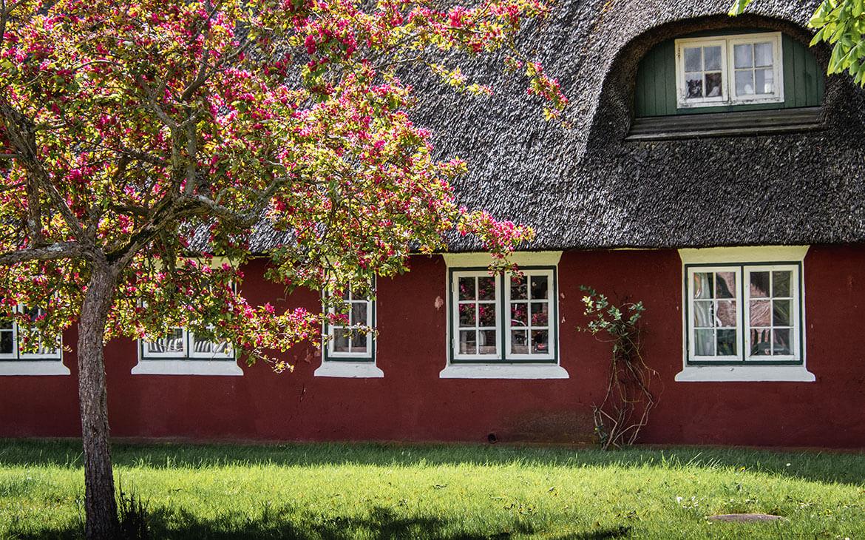 Husene på Fanø er helt bestemt et besøg værd