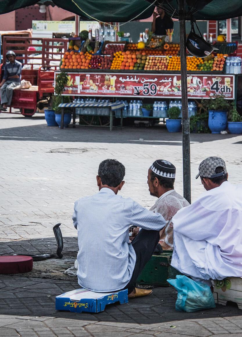 Slangetæmmerne sidder på den store Djema al-Fna plads