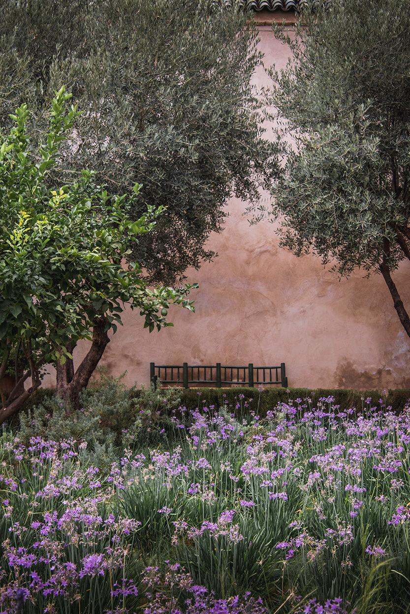 En fin bænk i Le Jardin Secret, meget fransk-agtigt