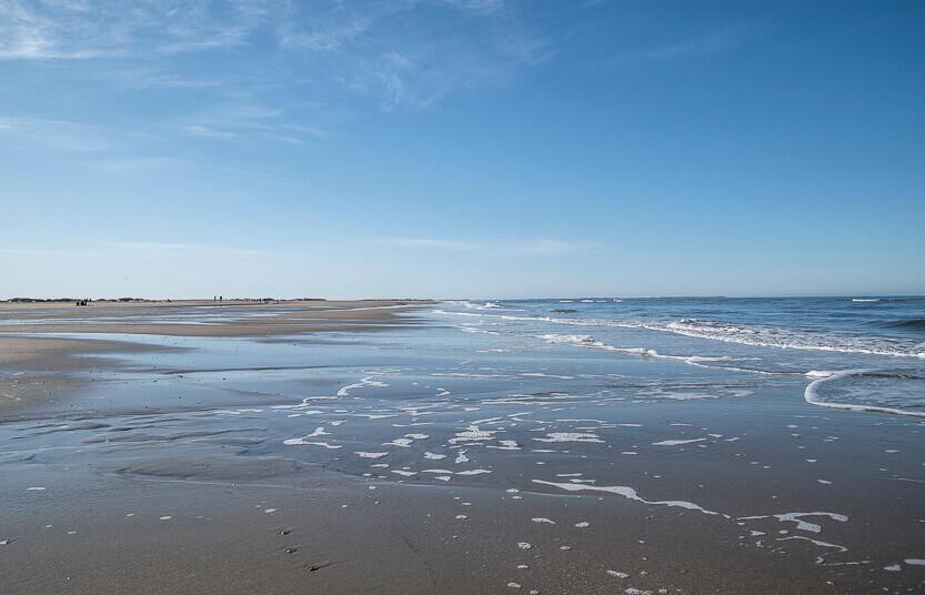 Lakolk strand på Rømø
