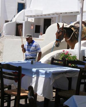 Æsel ned gennem byen Oy, Grækenland